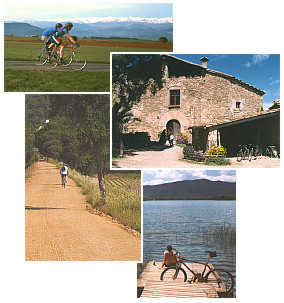 http://www.canribes.eu/picts/c_collage_rad_mtb.jpg
